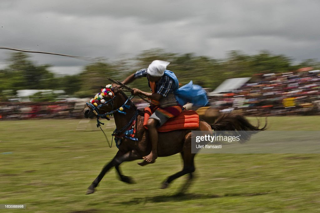 A Pasola rider throwing his spear during the pasola war festival at Wainyapu village on March 7, 2013 in Sumba Island, East Nusa Tenggara, Indonesia. Sandalwood pony horses are native to the island of Sumba in Indonesia. For the people of Sumba, the Sandelwood horse has an important role in all aspects of their daily life, including transportation and culture. On the island of Sumba the ancient tradition of Pasola still draws large crowds and tourists. Pasola involves two teams of men on horseback charging towards each other.