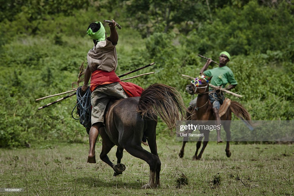 Pasola riders prepares for throwing their spear during the pasola war festival at Weiha village on March 6, 2013 in Sumba Island, East Nusa Tenggara, Indonesia. Sandalwood pony horses are native to the island of Sumba in Indonesia. For the people of Sumba, the Sandelwood horse has an important role in all aspects of their daily life, including transportation and culture. On the island of Sumba the ancient tradition of Pasola still draws large crowds and tourists. Pasola involves two teams of men on horseback charging towards each other.
