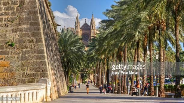 Passeig de Sagrera, La Seu Cathedral, Palma de Mallorca, Majorca, Balearic Islands, Spain