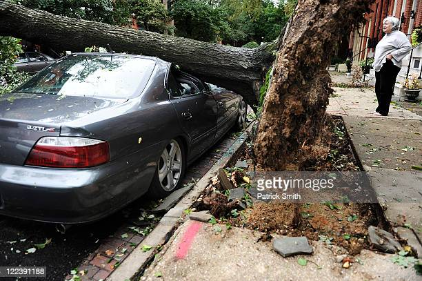 Passerby and neighbors look at a scene where a large tree crushed a car on August 28 2011 in Baltimore Maryland While Hurricane Irene has now been...