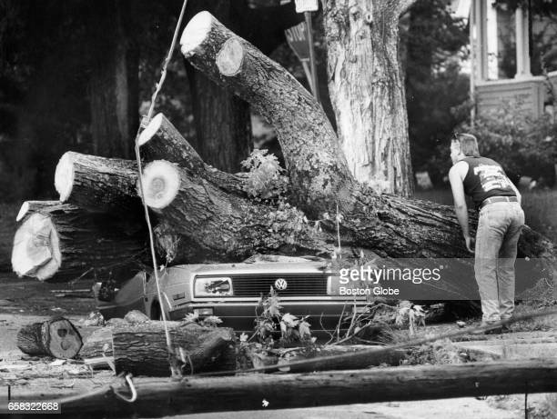 A passerby looks over a crushed Volkswagen on Charles Street in Maynard Mass on July 23 1988 A storm the night before blew a tree onto the vehicle A...