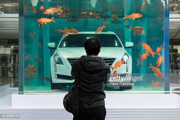 A passerby takes photos of a Cadillac CT6 luxury car placed in an aquarium tank for promotion in a trendy shopping district on February 25 2016 in...