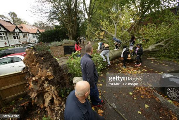 Passersby climb over a fallen tree lying across the road in Shepherd's Hill north London due to the storm affecting parts of the UK