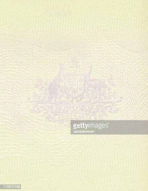 Passport graphic with many intricate lines