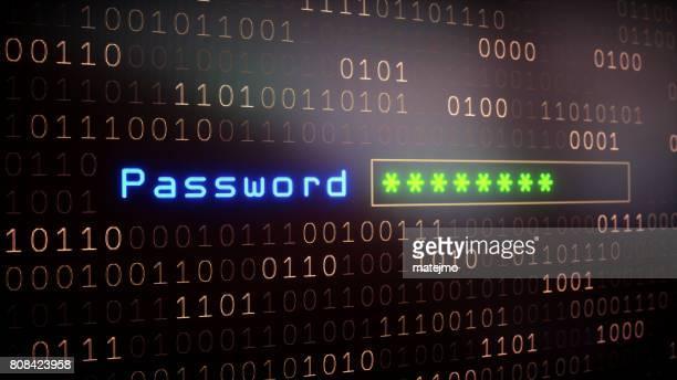 Password Input Field on Binary