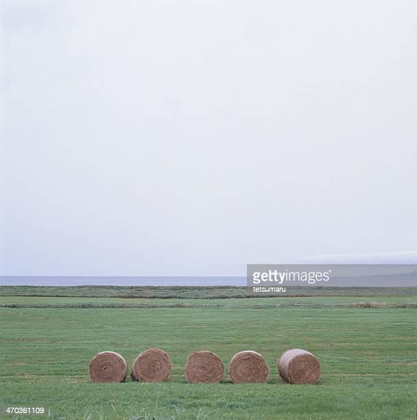 Pasture rolls