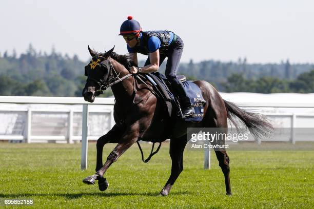 Pat Cosgrave riding Nootka Sound have a track gallop at Ascot Racecourse on June 14 2017 in Ascot England