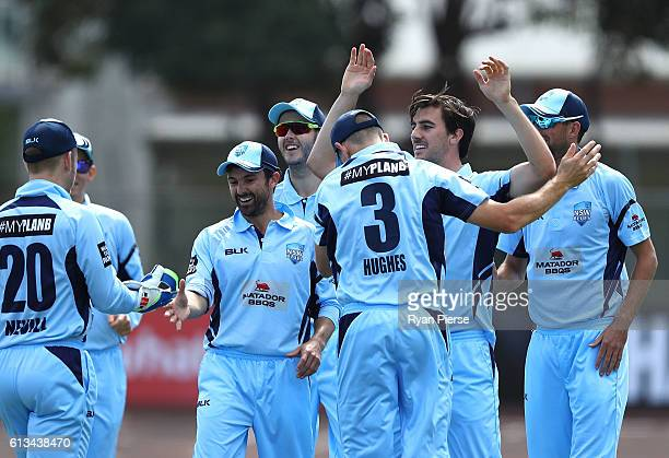 Pat Cummins of the Blues celebrates after taking the wicket of Ben Dunk of the Tigers during the Matador BBQs One Day Cup match between New South...