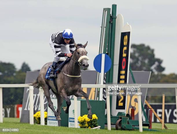 Pat Smullen rides Chinese White over the line to win the Cara Hotels European breeders fund maiden at Leopardstown Racecourse Dublin Ireland