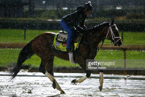 Patch runs on the track during morning training prior to the 143rd Kentucky Derby at Churchill Downs on May 5 2017 in Louisville Kentucky