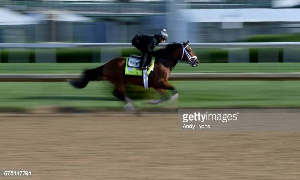 Patch runs on the track during the morning training for the Kentucky Derby at Churchill Downs on May 1 2017 in Louisville Kentucky