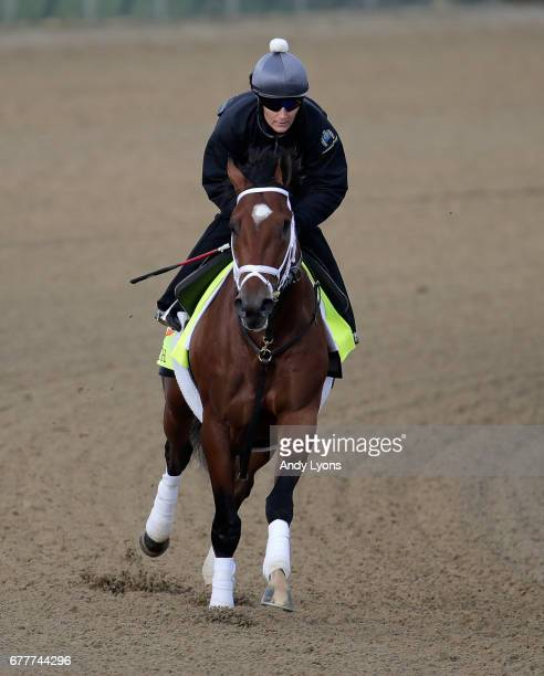 Patch runs on the track during the morning training for the Kentucky Derby at Churchill Downs on May 3 2017 in Louisville Kentucky