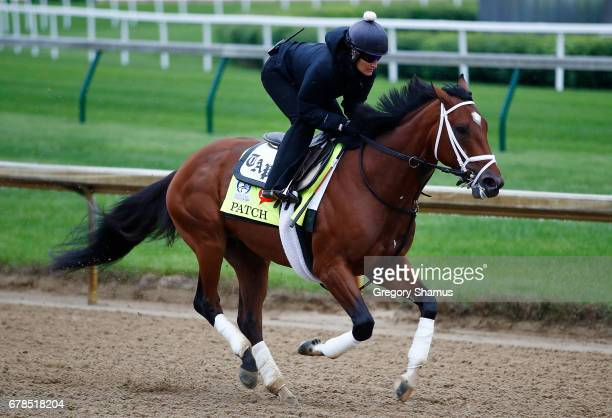 Patch trains on track prior to the 143rd Kentucky Derby at Churchill Downs on May 4 2017 in Louisville Kentucky