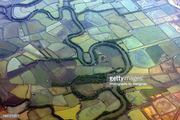 Patchwork of blocked shrimp farms