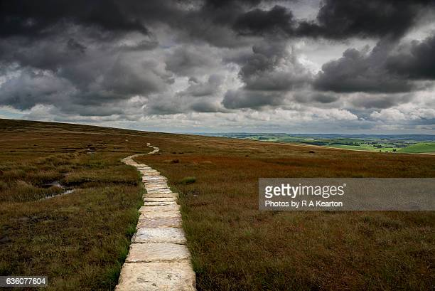 Path across the bare and barren moors