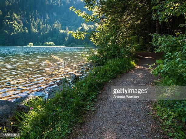 Path along Spring Lake