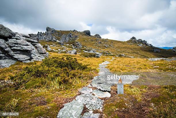 Path atop Western Arthur range, southwest Tasmania