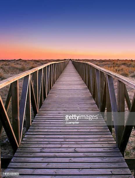 Path between dunes in Huelva