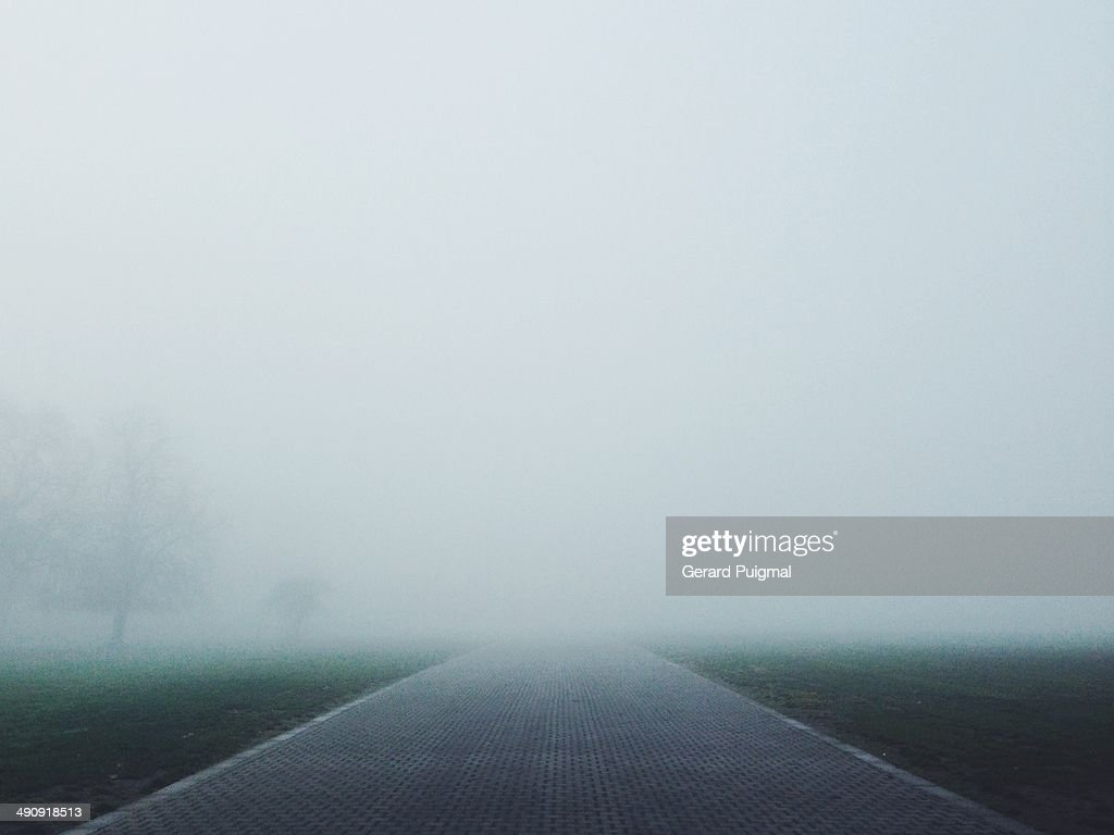 Path covered by fog in a park