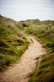 Path from the beach