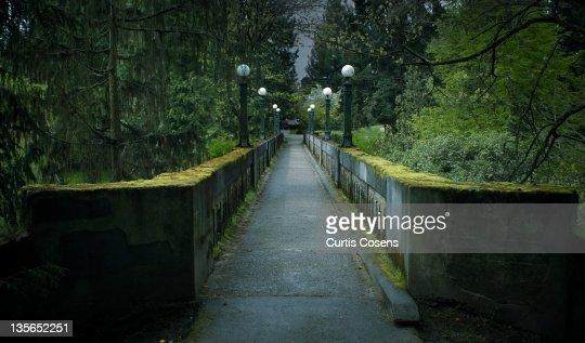 Path in Arboretum