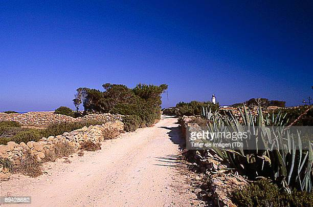 Path in Formentera Balearic Islands Photo by Taller de Imagen /Cover/Getty Images