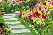 Path in Ornate Flower Garden