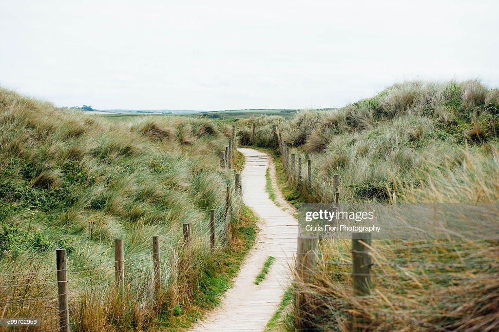 Path in Gwithian, Cornwall, UK