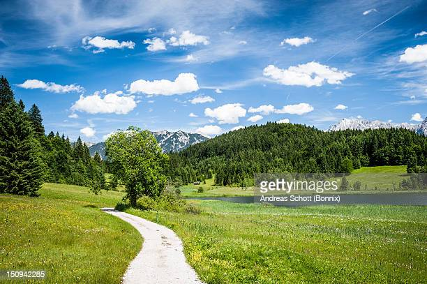 Path leading through green landscape