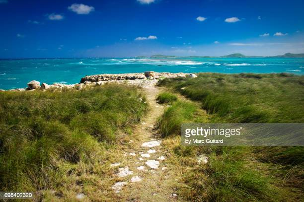 Path Leading to the Caribbean Sea, Saint Philip Parish, Antigua