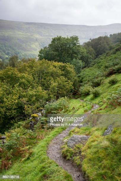 Path on Kisdon hill near Keld, Yorkshire Dales, England