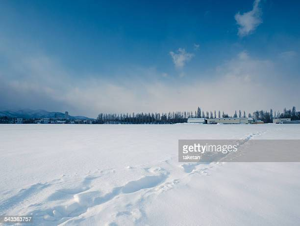A path on snow field