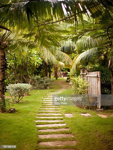 Path through resort.