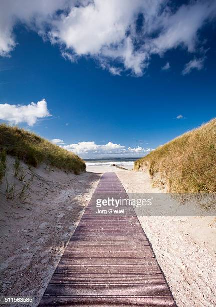 Path through the dunes to the beach