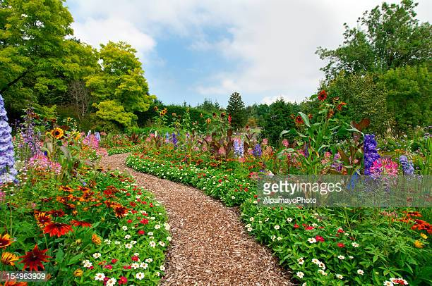 Path thru lush summer flower garden - I