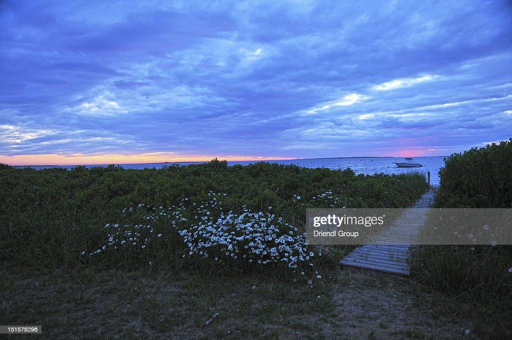 Path to beach at sunset. : Stock Photo