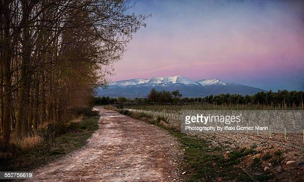 Path to Moncayo