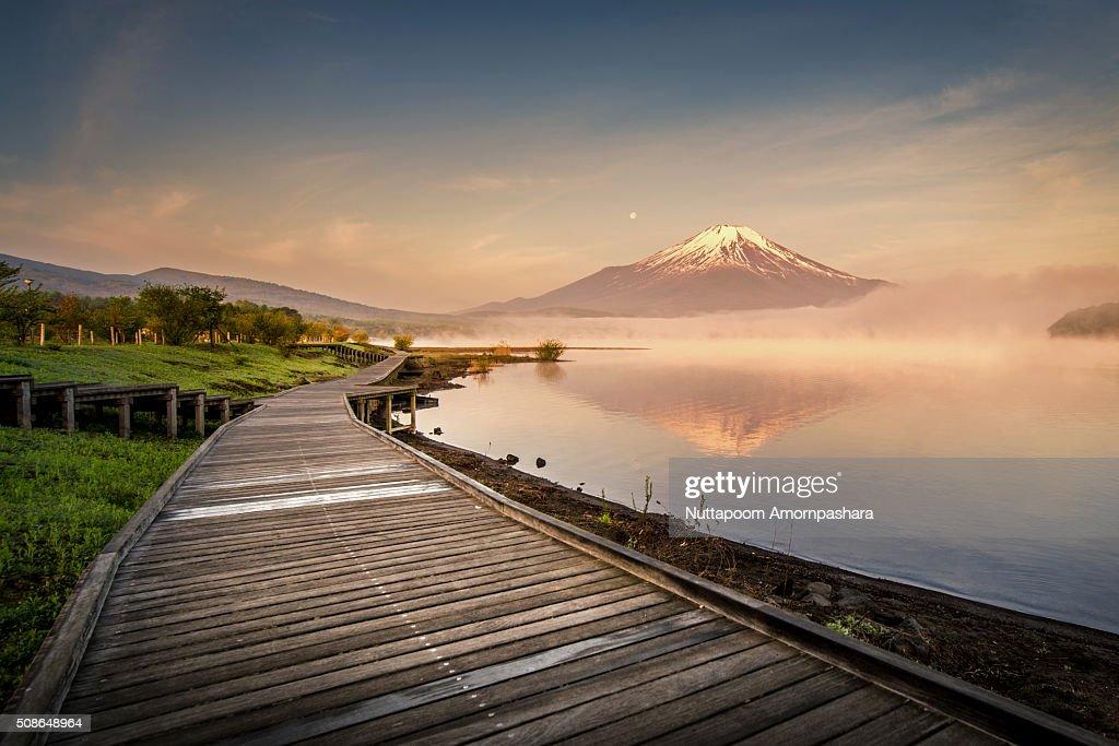 Path to Mt.Fuji : Stock Photo
