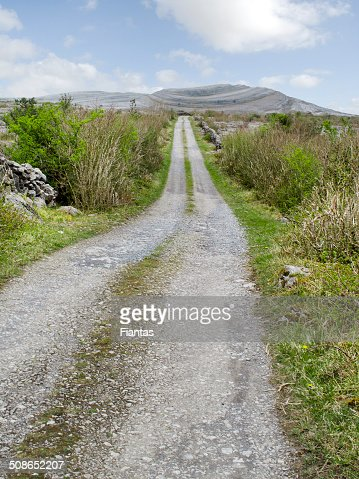 Path to Mullaghmore : Stock Photo