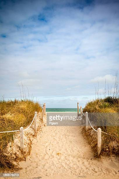 Path to the sandy beach