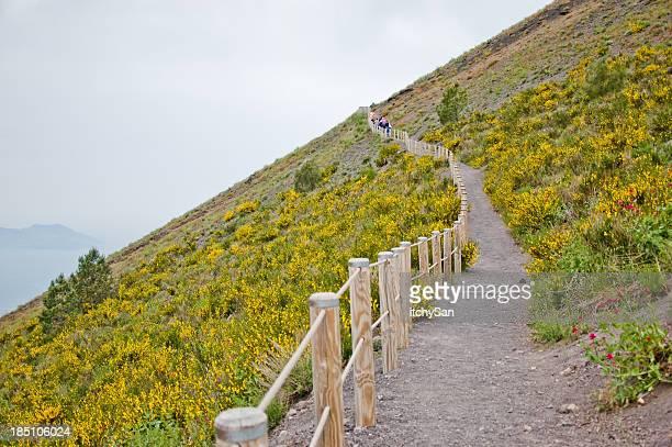 Path to top of Vesuvius