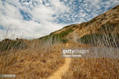Path up  hill : Stock Photo