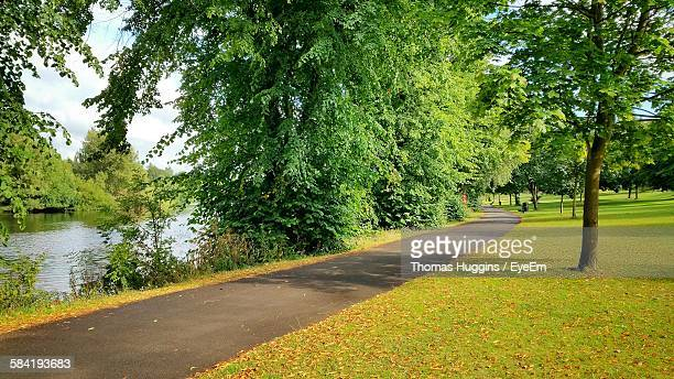 Pathway Amidst Lake And Grassy Field At Park