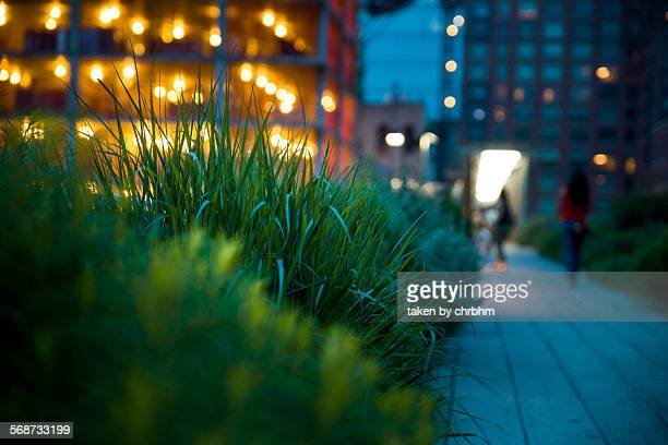 Pathway at Highline Park