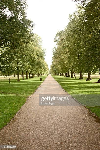 Pathway in Hyde Park London