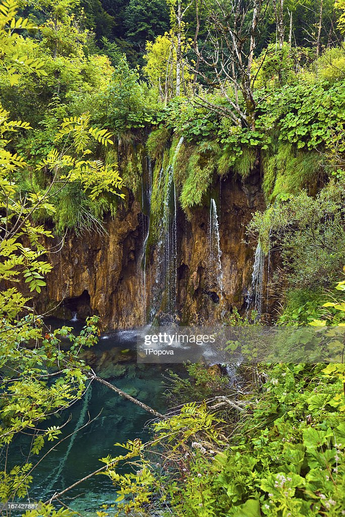 Pathway in Plitvice lakes park at Croatia : Stock Photo