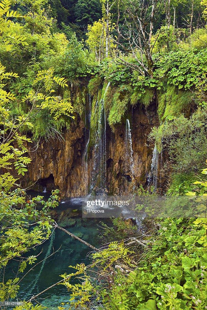 Pfad in den Nationalpark Plitvicer Seen in Kroatien park : Stock-Foto