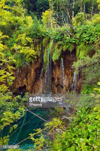Vía en de Plitvice lakes park en Croacia : Foto de stock