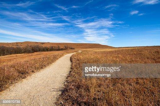 Pathway into the Prairie : Stock Photo