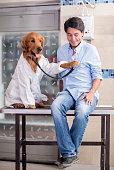 Patient at the vet